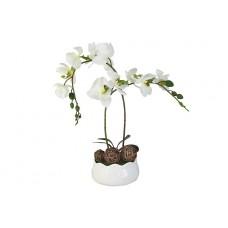 Декоративные цветы Орхидея белаяна керамической подставке