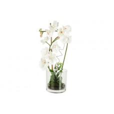 Декоративные цветы Орхидея белая в стеклянной вазе